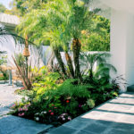 Tropical Palm Tree Plant Design