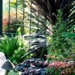 Tropical Succulent and Plant Design