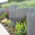 Modern Landscape Succulents and Greenery