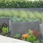 Modern Landscape Succulents and Grasses