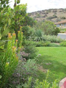 green landscape Design