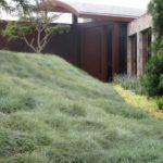 Modern Landscape Greenery