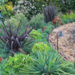 Landscape Design Greenery
