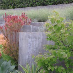 Concrete Grasses ad Plants