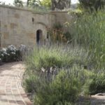Mediterranean Pathway with Bushes