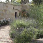 Italian Villa Pathway with Lavender Bushes