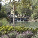 Italian Villa Plants Next to Water