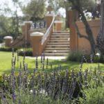 Italian Villa Stair Case and Lavender