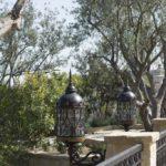 Italian Villa Tree Landscape