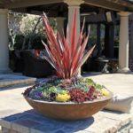 Mediterranean Succulent Pot
