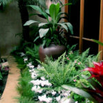 Tropical Pottery and Plant Design