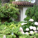 Mediterranean Home Landscape Design