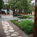 Stone Pathway with Gravel and Shrubs