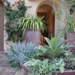 Mediterranean Doorway with Potted Succulents