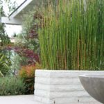 Bamboo Landscape and White Brick