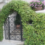 Landscape Hedge Arch and Gate